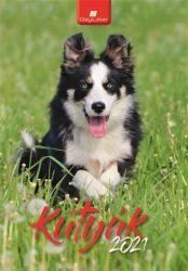 DAYLINER Kutyák 2021 230x330 mm fali naptár