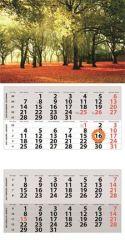 DAYLINER 2021 két tömbös négy hónapos speditőr naptár