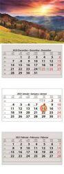 DAYLINER 2021 három tömbös három hónapos speditőr naptár