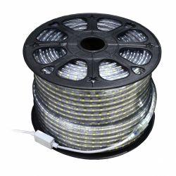 Art L4201905 IP65, 12mmx50m, 4.8W/m, 60xSMD3528/m, 230V, 50m fehér-áttetsző LED szalag