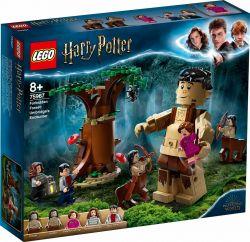 LEGO® (75967) Harry Potter A Tiltott Rengeteg: Összecsapás Umbridge