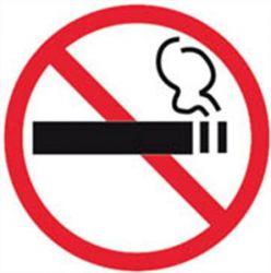 Apli tilos a dohányzás információs matrica