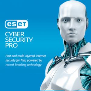 ESET Cyber Security Pro HUN 1 Felhasználó 1 év online teljes körű védelmi szoftver